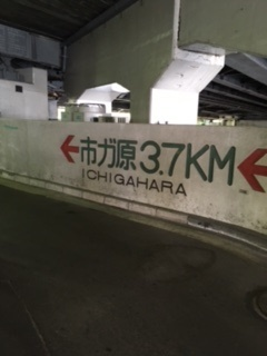 市ケ原.jpg